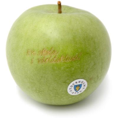 Stockholms Stad apple
