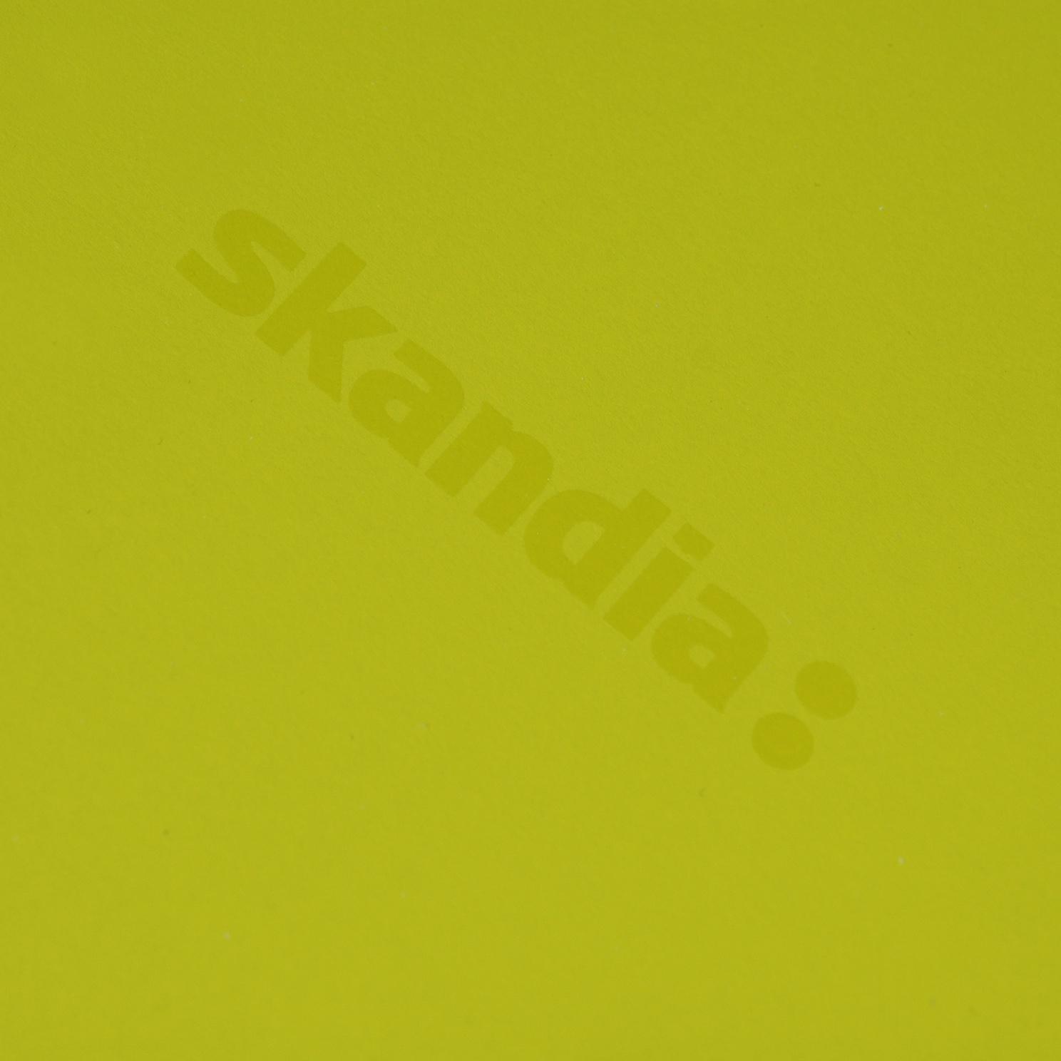 skandia whitelines closeup logo