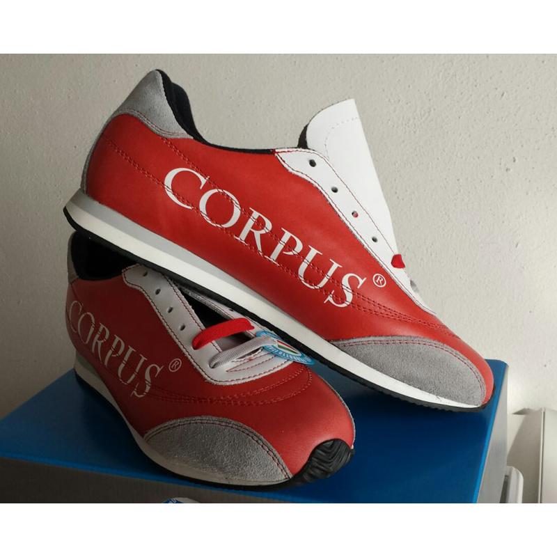 Art 450 Corpus DE 1