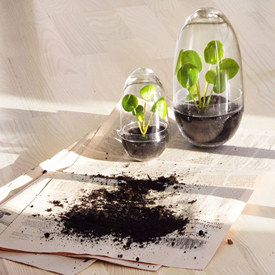Grow s l