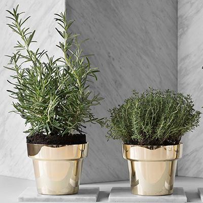 Herbs pot 790h miljo