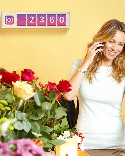 Instagram raknare blomsterhandel