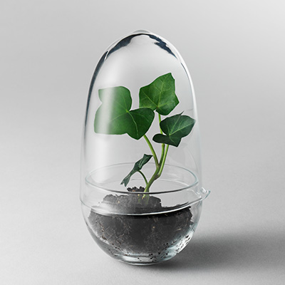 Grow Greenhouse S