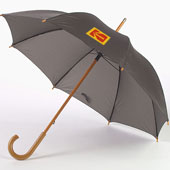 Paraply automatiskt