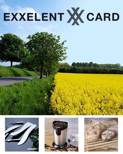 exxcelentcard 1